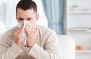 ambrozija-alergije